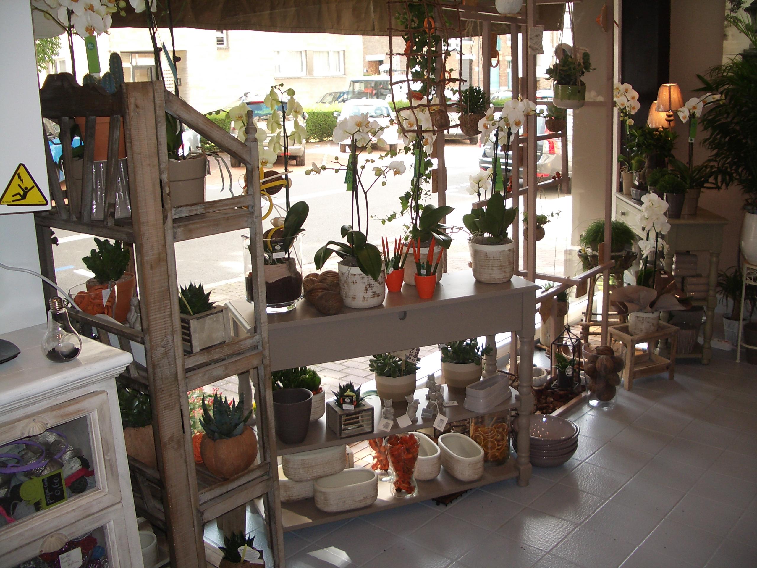Notre boutique Croisé Fleurs