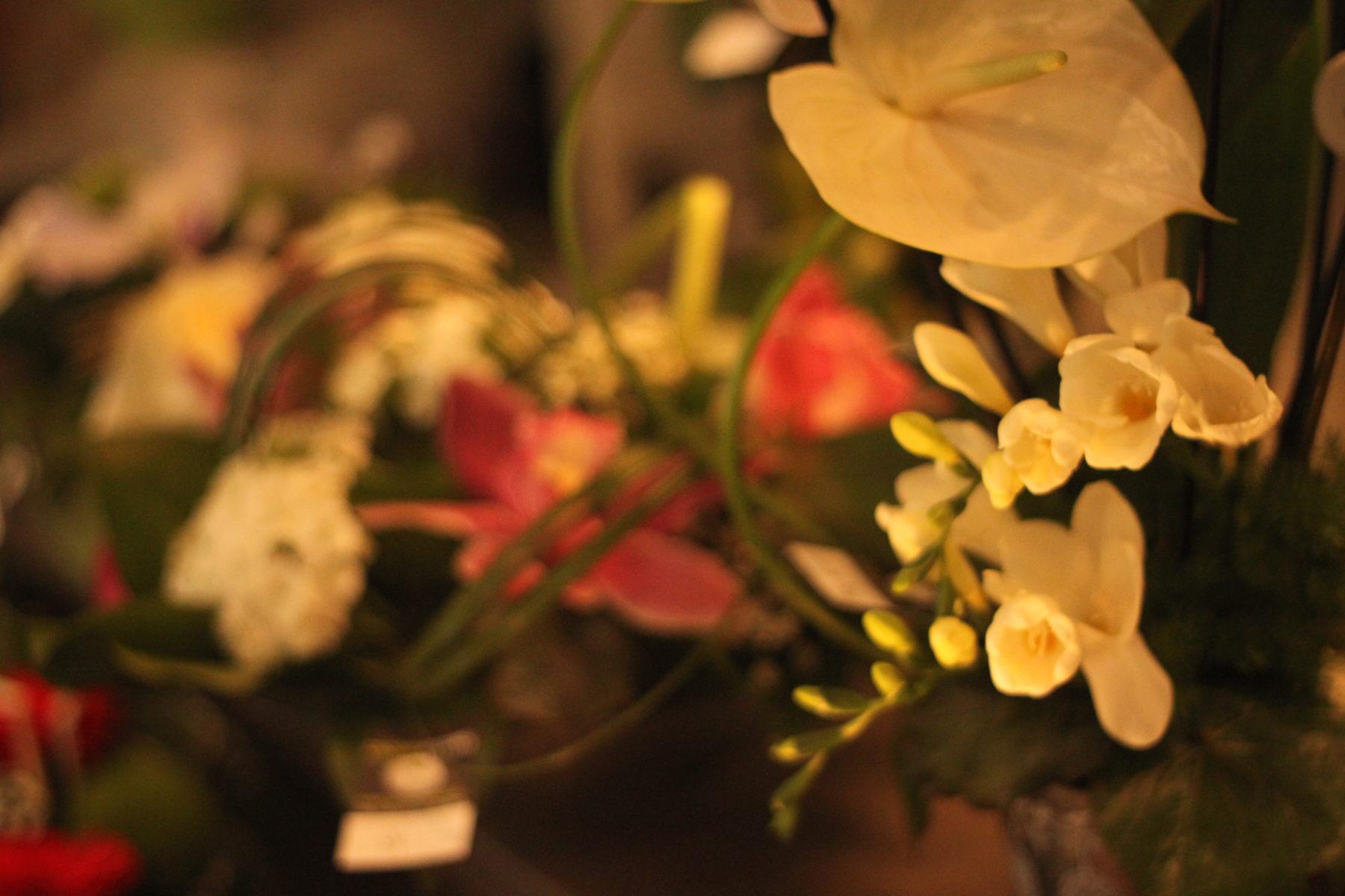 Compositions florales diverses