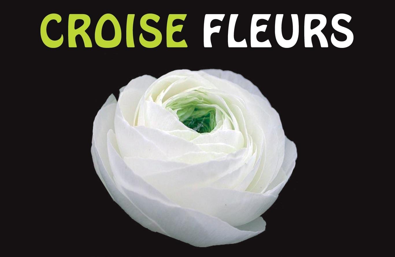 Croisé Fleurs Logo HP